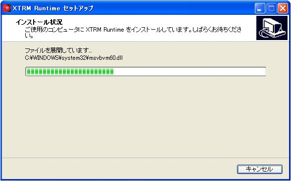 xtrm runtime